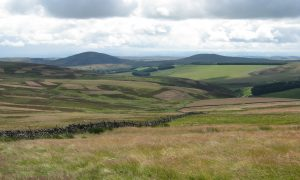 Dirrington Great Law (left) and Dirrington Little Law (right) looking south-eastwards Photo: © Neil Stewart Neil's Hillwalking Exploits